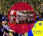 2011 FIFA Fair Play Award za japonské fotbalové asociace