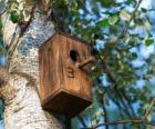 Malý dům ze dřeva pro ptáky na jaře