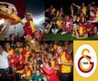Galatasaray, mistr Super Lig 2011-2012, Turecko fotbalové ligy