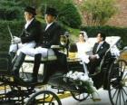 Novomanželé opuštění obřad v koňském-povozem