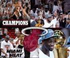 Miami Heat 2012 NBA mistr