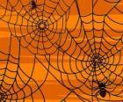 Halloween pavouci