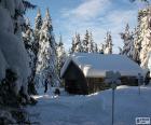 Kabina dřeva husté sněžení