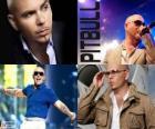 Pitbull (Armando Christian Perez), je hudební producent kubánského původu