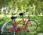 Tandem dvou cyklistů