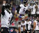 Baltimore Ravens 2012 AFC champion