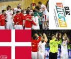 Dánsko v házené 2013 Mistrovství světa stříbrné medaile