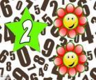 Číslo 2 hvězdy se dvěma květy