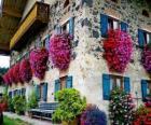 Dům na jaře s květinami v oknech
