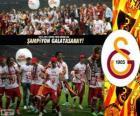 Galatasaray, mistr Super Lig 2012-2013, Turecko fotbalové ligy