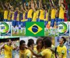 Brazílie Cup FIFA konfederace 2013