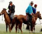 Xilingol kůň pocházející z Mongolska