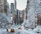 Zima v New Yorku