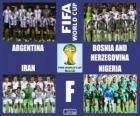 Skupina F, Brazílie 2014