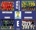 Skupina E, Brazílie 2014
