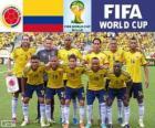 Výběr z Kolumbie, skupina C, Brazílie 2014