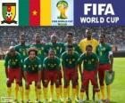 Výběr z Kamerunu, skupina A, Brazílie 2014