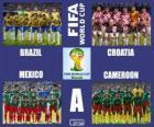 Skupina A, Brazílie 2014