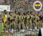 Fenerbahçe, mistr Super Lig 2013-2014, Turecko fotbalové ligy