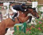 Kůň a jezdec absolvování překážku v skákání soutěž