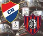 Klub Nacional Paraguay vs San Lorenzo de Almagro Argentiny. Finále Copa Libertadores 2014
