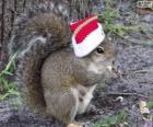Veverka s kloboukem Santa Claus
