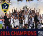 Los Angeles Galaxy, šampion MLS 2014
