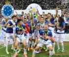Cruzeiro mistr 2014