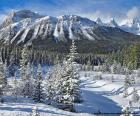 Crowfoot Mountain, Kanada
