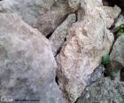 Kameny pro zahradu