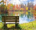 Banka dřeva u rybníka na slunečný podzimní den