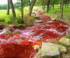 Krajina s řekou červené