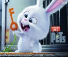 Snowball, Bílý králík