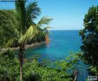 Moře z tropického ostrova