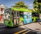 Autobus z Auckland, Nový Zéland