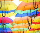Deštník z barev