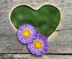 Srdce a dvě květiny