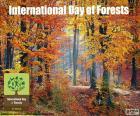 Mezinárodní den lesů