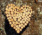Srdce z truhly