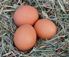 Tři vejce