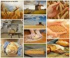 Koláž z chleba