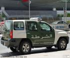 Dubaj policejní auto