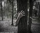 Lesa hrůzy