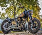 Krásný Harley-Davidson