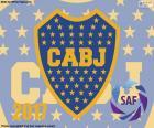 Boca Juniors, mistr 2016-2017