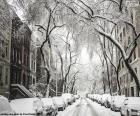 Zasněžené ulice