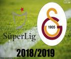 Galatasaray, mistr 2018 – 2019