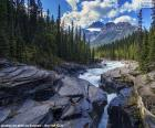 Řeka whitewater