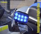 Mezinárodní policejní den