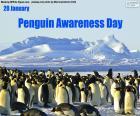 Penguin Den povědomí